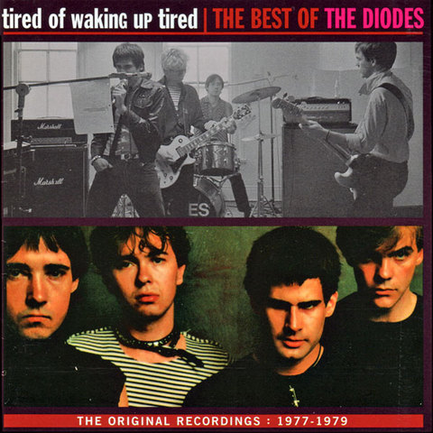TheDiodes_TheBestOf.jpg