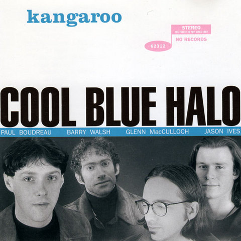 CoolBlueHalo_Kangaroo.jpg